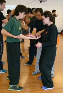 sifu-teach3-chile14