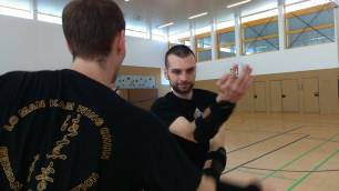 sifu gorden Germany Wing Chun 17-gan sao